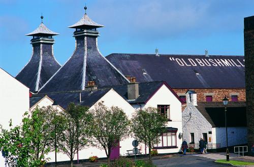 16870_Old Bushmills Distillery.jpeg_1588715129