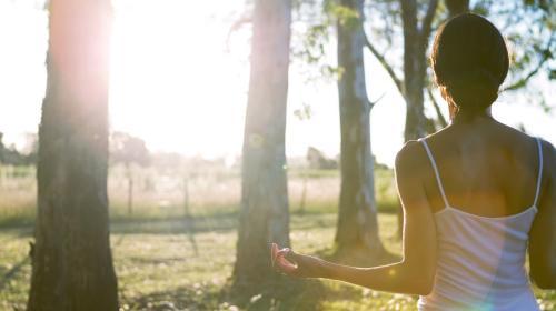 Aluna Healing Retreats 11.jpg_1568065578