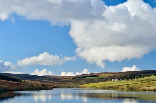 Lammermuir hills (5).jpg_1551981555