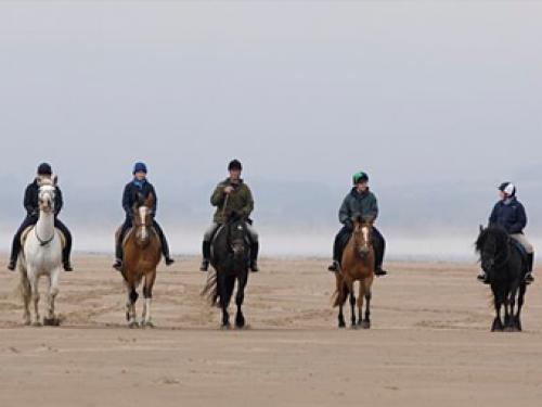 Horse Riding.jpg_1531997347