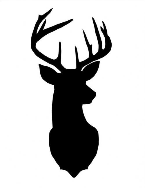 stag head 2.jpg_1575309300