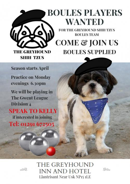 The Greyhound Shih Tzus Poster Draft 1.jpg_1551862