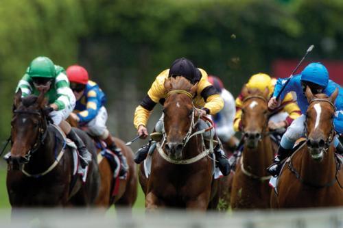 horse-racing_1.jpg