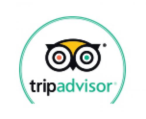 Trip Advisor.png_1568968984