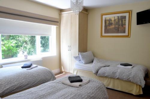 3 Single Bedded Room