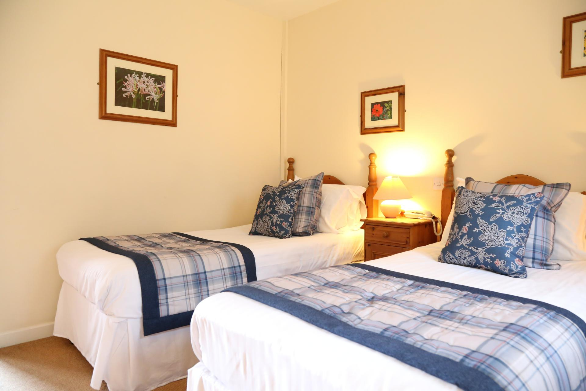 Family En-suite Room (inc. Breakfast and 1 or 2 Dogs)