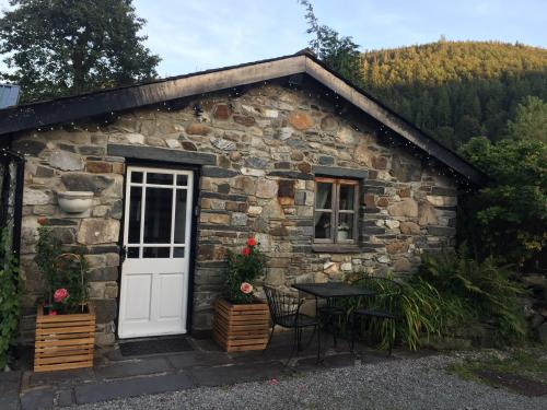 Dolweunydd Bed and Breakfast
