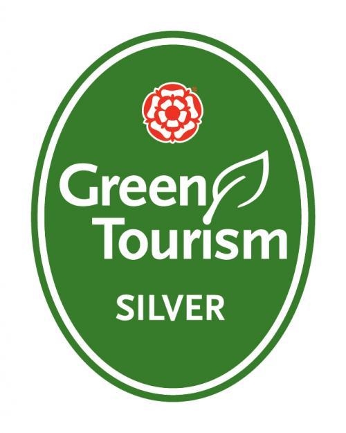 GT england silver.jpg