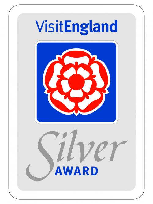 Silver Award.jpg_1541090869