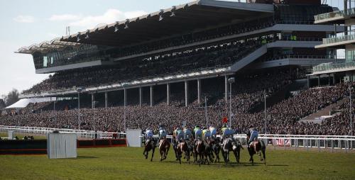 cheltenham races.jpg_1572435465