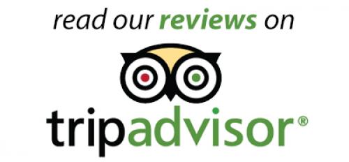 tripadvisor-logo.png_1554296203