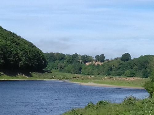 The River Tweed at Norham Northumberland