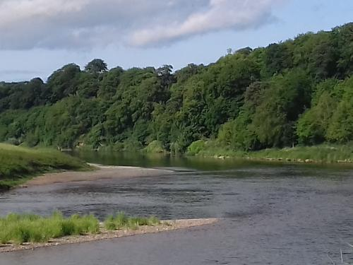 The River Tweed below Norham Castle Northumberland