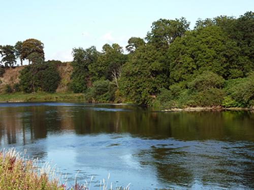 River Tweed at Tweed Mill 10 minute walk from Babingtons Cottage