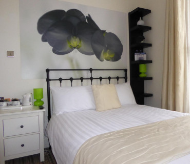 Room 6 - Orchid