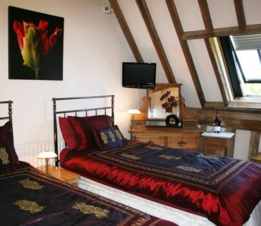 Vaulted Twin En-suite Room (inc. Breakfast)