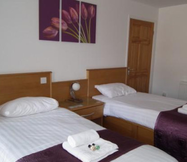 Twin En-Suite Room