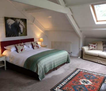 Saddletor- Super King Size Double En-suite Room (inc Breakfast)